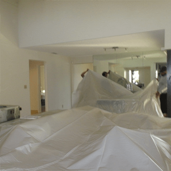 Commercial Mold Removal Service, Chicago, IL
