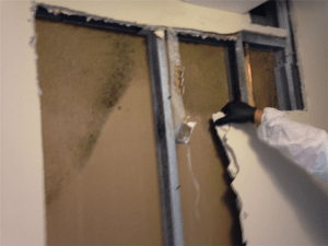 Residential Mold Removal Remediation