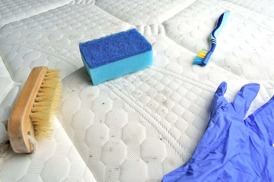 Get Mold Out Of Fabric