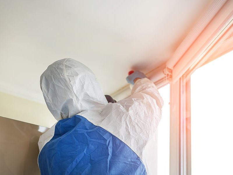 how to remove mold from furniture