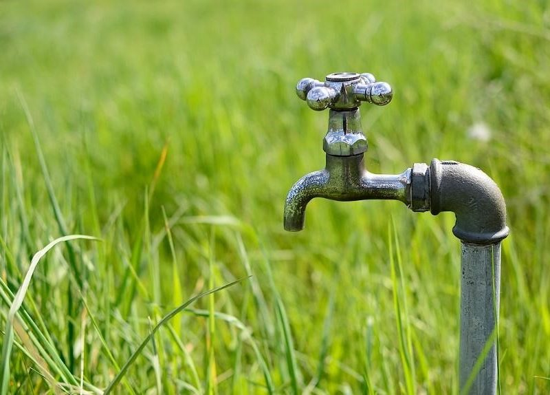 how to conserve water during a drought