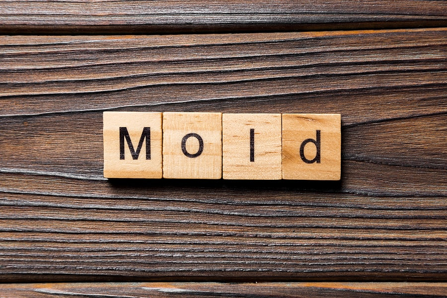 Mold On Wood Furniture