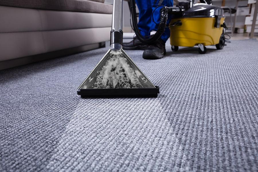 Damp Carpet Odor