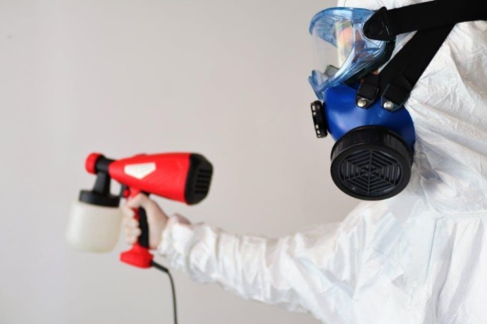Person removing mold from a house