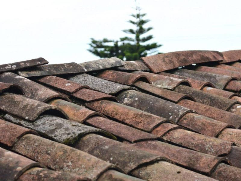 Jagged Roof Tiles
