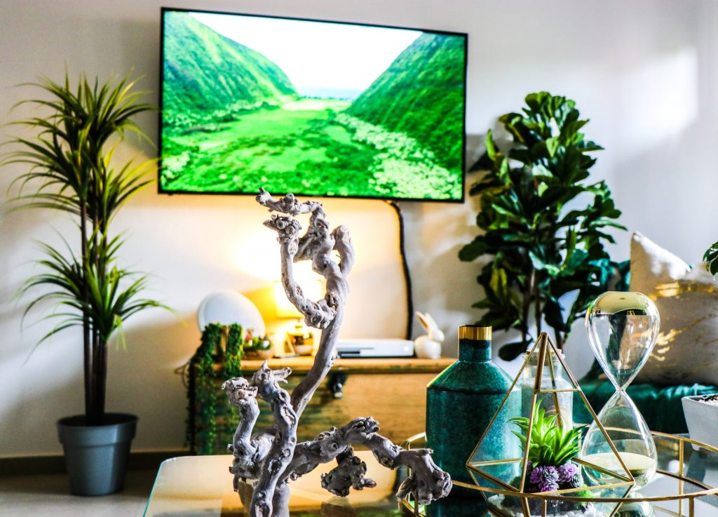 Lit Room With Two Plants, A Turned On TV, DVD Player And Switched On Lamp