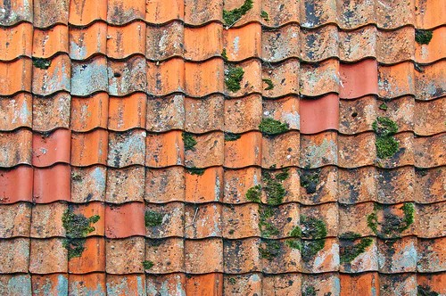 Roof Tiles Damaged By Water