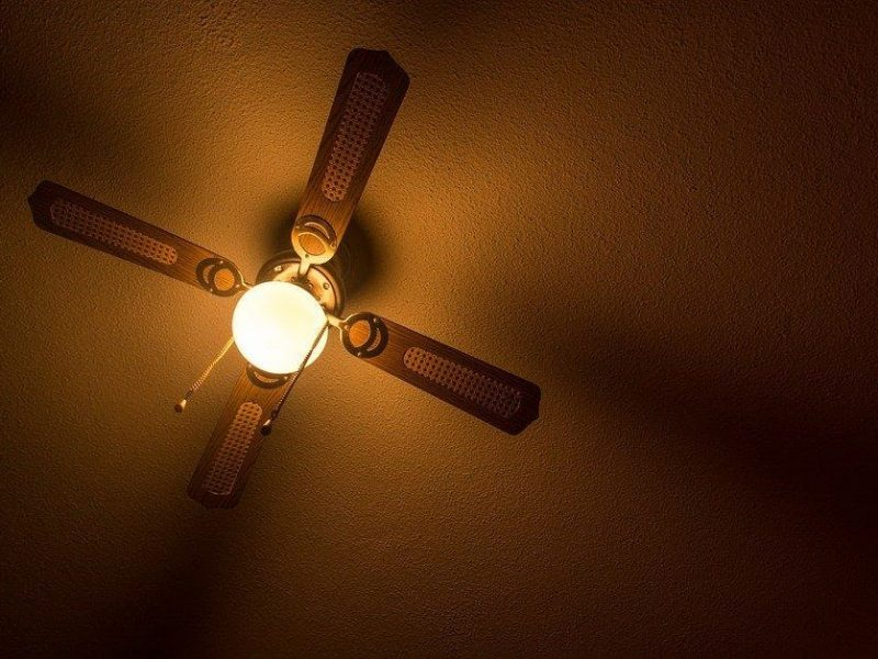Ceiling Fan With Light Fixture