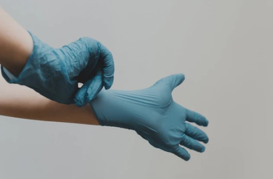 Person Wearing Blue Gloves