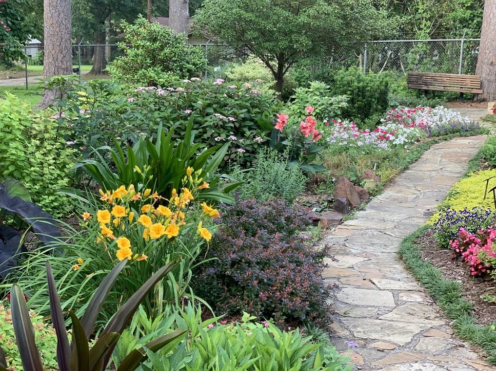Backyard With Colorful Plants