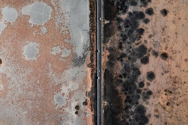 Toxic Mold On Orange Wall